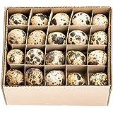 NaDeco® Wachteleier natur 60 Stück | Wachtelei | Wachtel Eier | Dekoeier | Ostereier | Osterdeko | kleine Dekoeier