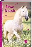 Freundebuch – Pferdefreunde – Meine Freunde: Schimmel im Sonnenuntergang
