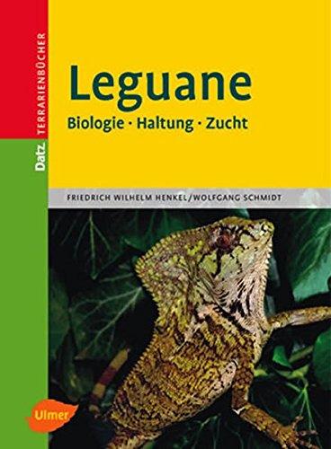 Leguane: Biologie - Haltung - Zucht (Datz Terrarienbücher)