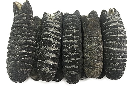 dried-seafood-dried-australia-sea-cucumber-free-worldwide-airmail