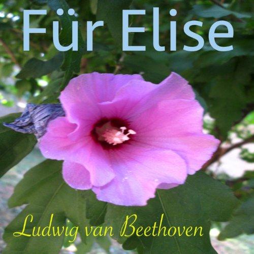Für Elise, WoO 59 (Klavier Solo Version)