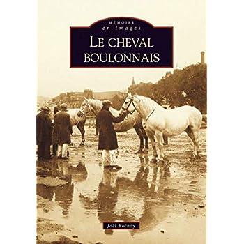Cheval boulonnais (Le)