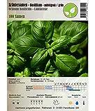Kräutersamen - Basilikum/Ocimum basilicum - verschiedene Sorten(mittelgroßblättrig/grün)