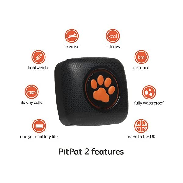 PitPat Dog Activity Monitor and Fitness Tracker - Lightweight and waterproof with no recharging or subscription (latest version, as seen on television) 2