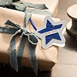 Die Stadtgärtner Geschenkanhänger | Stern blau | Anhänger mit Saatgut für Wildblumen