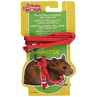 Living World Hamster Lead and Harness Red Living World Hamster Lead and Harness Red 51Kdvnl6IcL