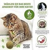 3x Katzenminze Ball | Naturprodukt | Besteht aus 100% natürlicher Katzenminze | Entspannung für Katzen | Katzenspielzeug | Fördert den natürlichen Spieltrieb | Unterstützt die Zahnpflege | 1A Qualität - 3