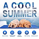 Lauva Dog Cool Mat, Dogs Self Cooling Non-Toxic Gel Mat Pads Mattress Pet Cat Cool Beds Extra Large for Dog Crates… 15