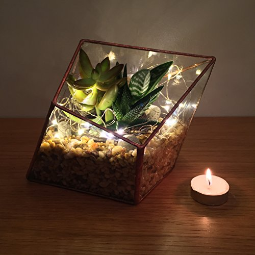 Copper Diamond Terrarium With Live Succulent Plants And Led Fairy