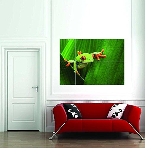 Doppelganger33 LTD Red Eyed Tree Frog Climbing Leaf Giant Art Print Home Decor Poster -