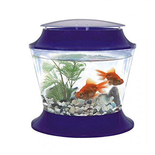 Fish R Fun Fischbehälter aus Plastik mit Deckel (37 x 36,6 cm) (Sortiert)