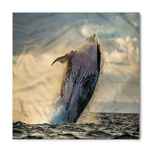 Whale Bandana, Island Wildlife Exotic Marine, Unisex Head and Neck Tie,Unisex Bandana Head and Neck Tie Neckerchief Headdress Silk-Like 100% Polyester(size:S) -
