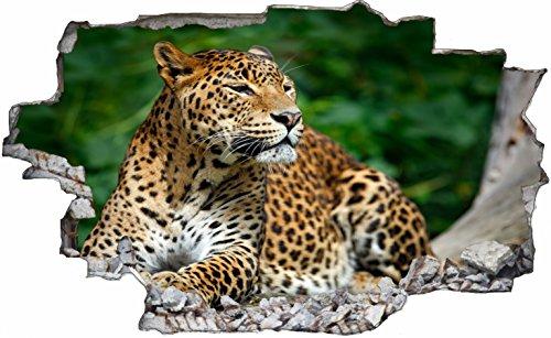 DesFoli Leopard Gepard 3D Look Wandtattoo 70 x 115 cm Wanddurchbruch Wandbild Sticker Aufkleber C167 (Leopard-druck-folie)