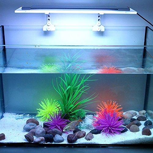Tomshine Led Aquarium Lampe, Aquarium Licht RGBW, SMD 2835 Aquarium Beleuchtung mit 3 Lichtsmodi für Fisch Aquarium (Mit Fernbedienung) (Fisch Fernbedienung,)