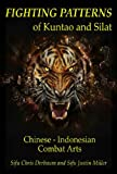 Image de Fighting Patterns of Kuntao and Silat: Chinese Indonesian Combat Arts (English E