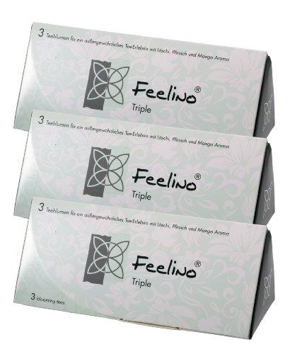 3 STÜCK edle 3er-Box Weißtee-Teeblumen mit Litschi, Mango- und Pfirsich-Aroma