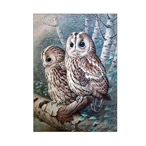 fish Owl Stickerei Handwerk Diamant Malerei Kreuzstich-Büro-Dekor Bild DIY Needlework Stitchwork Zeichnung