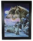 4Wölfe im Mondschein Snow Scene: dreidimensionale Farbe gerahmtes Bild, Rahmen mit 3D-Druck, aufhängfertig, Größe: 46x 36cm (Rahmen schwarz)