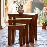 Custom Decor Carissa Indian Sheesham Mahogany Wood Solid Stool Nesting Bedside Tables (Brown) - Set of 3