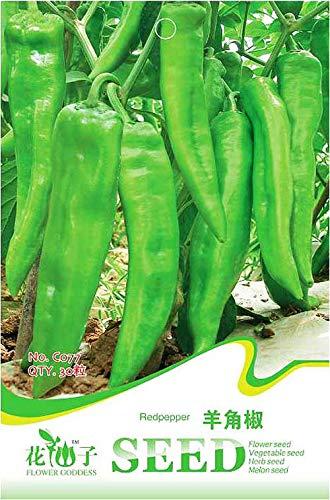 Portal Cool Original Paket 30 Capsicum Samen Capsicum Annuum Cayenne Pfeffer Gemüse C077 -