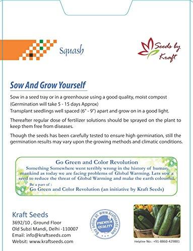 Farm Seeds Hybrid Zucchini