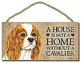 Cavalier King Charles Spaniel Hund Schild mit Personalisierung Kit