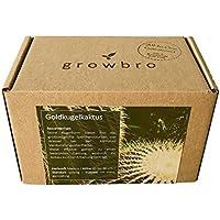 growbro Kaktus Goldkugelkaktus | Anzuchtset | Geburtstagsgeschenk, Sukkulenten, Geschenke für Männer, Gastgeschenk, Zimmerpflanzen, Kakteen, Cactus