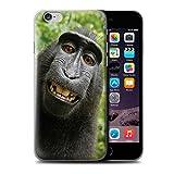 Stuff4 Coque de Coque pour Apple iPhone 6 / Selfie Babouin Design/Animal Drôle Meme Collection