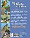 Vögel zu Gast im Garten: Beobachten, bestimmen, schützen (inkl - CD) - Axel Gutjahr