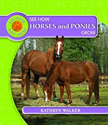 See How Horses and Ponies Grow (See How They Grow (Library)) by Kathryn Walker (2009-01-06)
