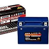 Panther Motorradbatterie Gel 12V 11Ah 51120 YTZ12-S
