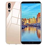 TianranRT Acht Kerne 6,1 Zoll Dual HD Kamera GSM WiFi Smartphone Android 8 GB Dual-SIM-Handy (Gold)