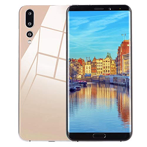 TianranRT Acht Kerne 6,1 Zoll Dual HD Kamera GSM WiFi Smartphone Android 8 GB Dual-SIM-Handy (Gold)