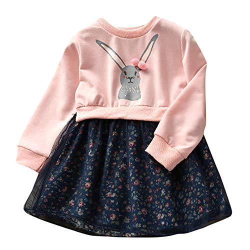 Fenverk 2Pc Baby MäDchen Kleider Prinzessin Dresses BlumenmäDchenkleid Taufkleid Festlich Hochzeit Partykleid Festzug Babybekleidung Kleid + Tasche(Rosa,85)