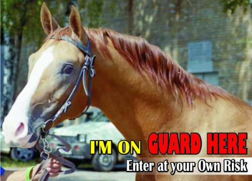 attention-beware-fun-sign-horse-dole-trotter-horse-for-your-home-or-house-sf2591-size-a4