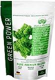 GREEN POWER - Superfood Mix mit Brennnessel, Löwenzahn, CHLORELLA, SPIRULINA, AFA Alge, Moringa, Grüner Tee, uvm... | 250 Gramm | Zur Fastenkur oder als Smoothie