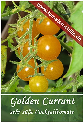 Tomaten Samen - 15 Stück - Golden Currant - Cocktailtomate