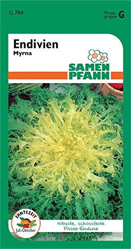 Samen Pfann G784 Frisee-Endivie Myrna (Salatsamen)