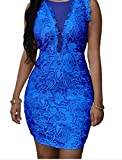 Bling-Bling Dress Women's Lace Nude Mesh Accent Dress blue