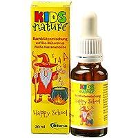 Kids Nature Happy School, Bachblüten-Komplexmittel *alkoholfrei*, 20ml Stockbottle preisvergleich bei billige-tabletten.eu