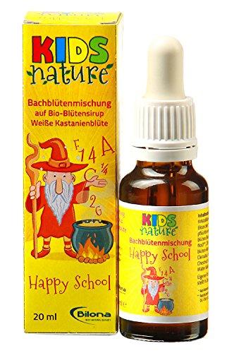 Kids Nature Happy School, Bachblüten-Komplexmittel *alkoholfrei*, 20ml Stockbottle