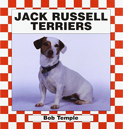 Jack Russell Terriers (Dogs Set III)