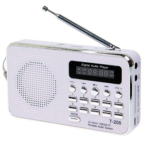 Meisijia T-205 FM Radio-Empfänger tragbaren HiFi-Karten-Lautsprecher Digital-MP3-Musik-Lautsprecher für Camping Wandern Outdoor Sport