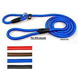 Pet Wholesale Nylon Rope Training Slip Lead Strap Adjustable Leash for Small and Medium Dogs, Multicolor