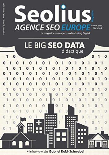 Le Big SEO Data didactique (Les experts en Marketing Digital t. 2)