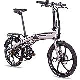 CHRISSON 20 Zoll E-Bike Klapprad eFolder hellgrau - E-Faltrad mit AIKEMA Nabenmotor 250W, 36V, 30 Nm, Pedelec Faltrad für Damen und Herren, praktisches Elektro Klapprad