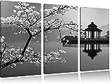 magnifique cerisier sur la mer japonaise noir / blanc sur l'image 120x80 sur toile 3-pièces de l'image de la toile, énorme XXL Photos complètement encadrée avec civière, art impression sur murale avec cadre, gänstiger comme la peinture ou la peinture à l'huile, aucune affiche ou un poster