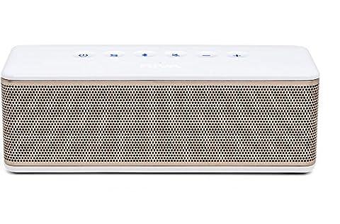 RIVA S RTS01G Premium Bluetooth Speaker