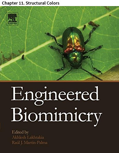 Engineered Biomimicry: Chapter 11. Structural Colors (English Edition) -