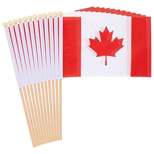 Juvale 12Stick Flaggen -, Hand Flaggen, Polyester Country Stick Flagge Banner, Dekorationen für Partys, Paraden, Sportveranstaltungen, und International Festivals- 14x 21,1cm Kanada